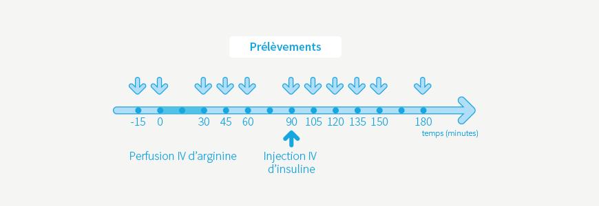 Test à l'arginine - insuline